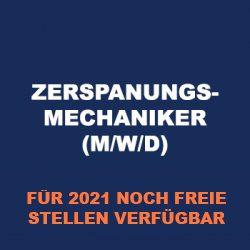 berufsauswahl_202101_2